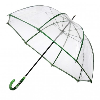 Skaidrus skėtis CL-4870/03